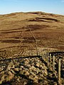 Boundary fence, Scar Hill - geograph.org.uk - 328582.jpg
