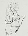 Braus 1921 218.png