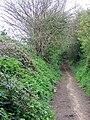 Bridleway near Breamore - geograph.org.uk - 1281115.jpg