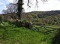 Bridleway near Leign - geograph.org.uk - 1291998.jpg