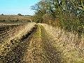 Bridleway towards Oak Bed, near Compton Bassett - geograph.org.uk - 1172896.jpg