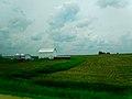 Bright White Barn - panoramio (1).jpg