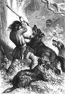 Wolf Hunting With Dogs Wikipedia