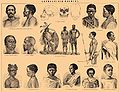 Brockhaus and Efron Encyclopedic Dictionary b4 506-1.jpg