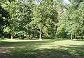 Bucknell Wood picnic area - geograph.org.uk - 443636.jpg