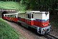 Budapest Children's Railway 001 (Gyermekvasút).jpg