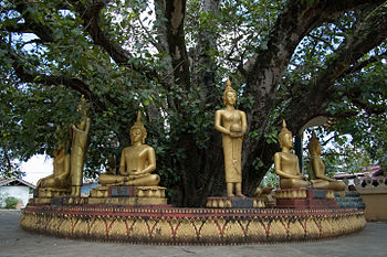 Buddha sculptures at the That Luang Stupa, Vie...