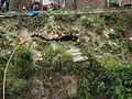 Bungy The Last Resort, Nepal P5166781.jpg