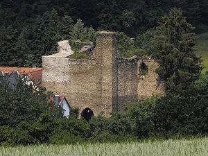 Burg-Wallrabenstein-JR-A40-0669-2009-06-13.jpg
