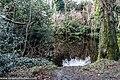 Bushy Park, Dublin (8389539853).jpg
