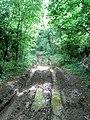 Byway through Glympton Heath - geograph.org.uk - 463880.jpg