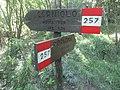 CAI 257 Cerrete Segnavia.jpg