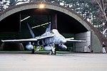 CF-18A 439 sq (23780173449).jpg