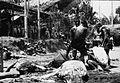 COLLECTIE TROPENMUSEUM Geslachte karbouwen tijdens een dodenfeest van de Toraja in Sadang TMnr 10029393.jpg