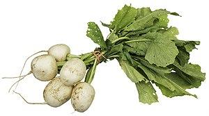 Turnip - Image: CSA Tokyo Turnips