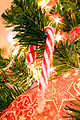 Candy cane on tree.jpg