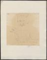 Canis lagopus - 1700-1880 - Print - Iconographia Zoologica - Special Collections University of Amsterdam - UBA01 IZ22200287.tif