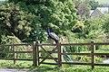 Caradon Town sentinel - geograph.org.uk - 466264.jpg