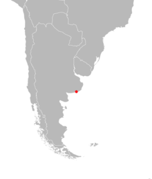 The single known collection site is in coastal eastern Argentina