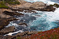 Carmel Highlands May 2011 005.jpg
