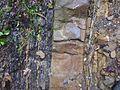 Carpathian flysch cm01.jpg