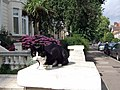 Cat with hydrangea, Belsize Park - geograph.org.uk - 485703.jpg