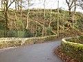Caty Well Bridge - geograph.org.uk - 1070229.jpg