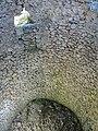 Cava de l'Habitació (Agres) - 04.JPG