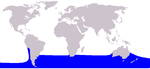 Southern right whale dolphin range