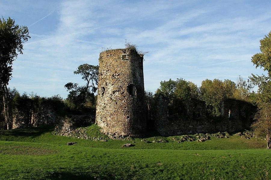 Vue d'ensemble des ruines.