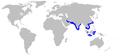 Chaenogaleus macrostoma distmap.png