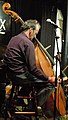 Charlie Hart playing with Terry Day and Friends (5585003394).jpg