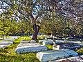 Charlotte Jane Memorial Park Cemetery 02.jpg