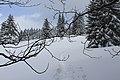Chemin de randonnée vers la cabane du Carroz - panoramio (18).jpg
