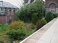 Chesham station garden.jpg