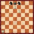 Chess-epaulettenmatt-2.PNG