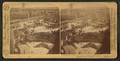 Chicago - the Union Stock Yards (stockyards). A wild lot from Texas, U.S.A, by Barker, George, 1844-1894.png