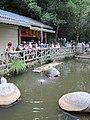 China IMG 3747 (29742494755).jpg