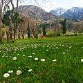 Chitral 01 Pakistan.jpg