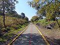 Ciclo vía del Parque Ecológico.JPG