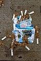 CigaretteFries.jpg