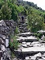 Cinque Terre Trail (4711614597).jpg