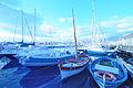Circolo Nautico NIC Porto di Catania Sicilia Italy Italia - Creative Commons by gnuckx (5382492408).jpg
