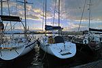 Circolo Nautico NIC Porto di Catania Sicilia Italy Italia - Creative Commons by gnuckx (5383743980).jpg