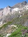 Cirque-de-Barrosa-Robinera-chemin-Pyrenees.JPG
