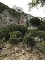Climbing paradise - panoramio.jpg