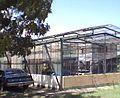 Cobertizo UCLA - panoramio.jpg