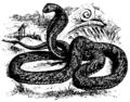 Cobra Mivart.png