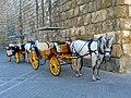 Coches de caballo turístico.jpg