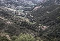 Coll de Banyuls 2013 07 17 12 M6.jpg